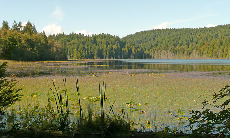 Killarney Lake on Bowen Island