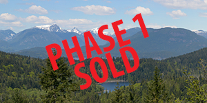 Phase1-SOLD